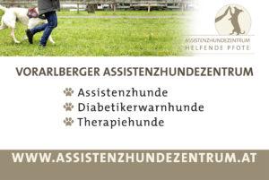 Coole Werbeplane, Assistenzhunde, Assistenzhundezentrum, Lisi Linger, Diabetikerwarnhunde